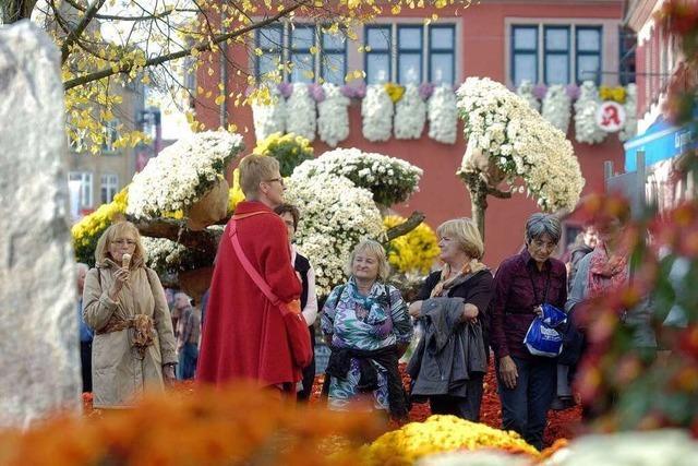 Lahr ist mit den Besucherzahlen der Chrysanthema zufrieden