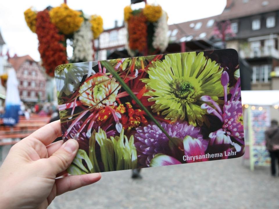 Chrysanthema zieht auch  Hessen und Bayern an  | Foto: Bastian Henning