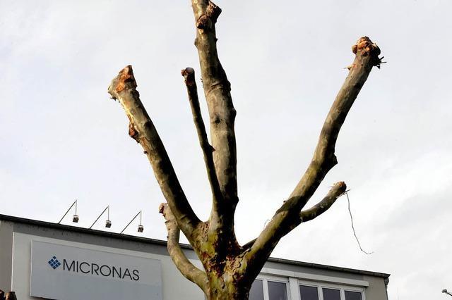 Warum Energiesparen Micronas Freiburg teuer zu stehen kommt