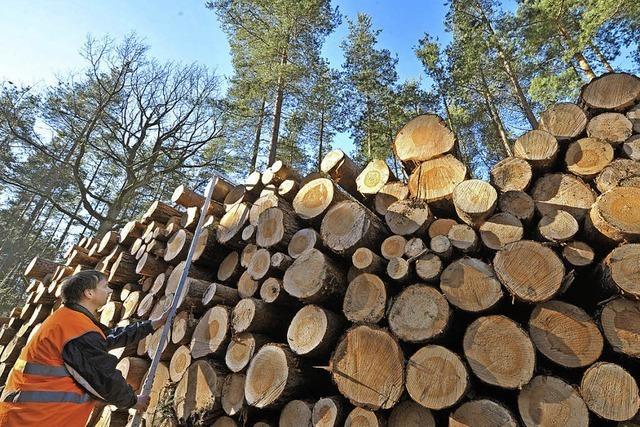Reicht das Holz für kuschelige Wärme?