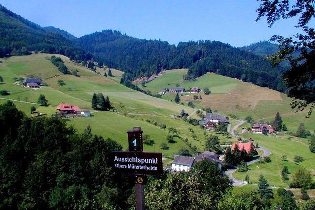Kehrt der Bergbau in den Südschwarzwald zurück?