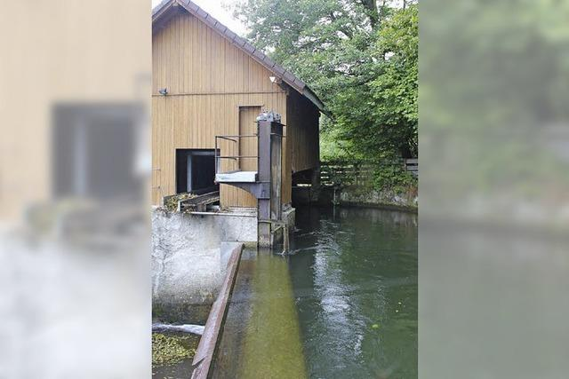 Wasserkraft mit langer Tradition