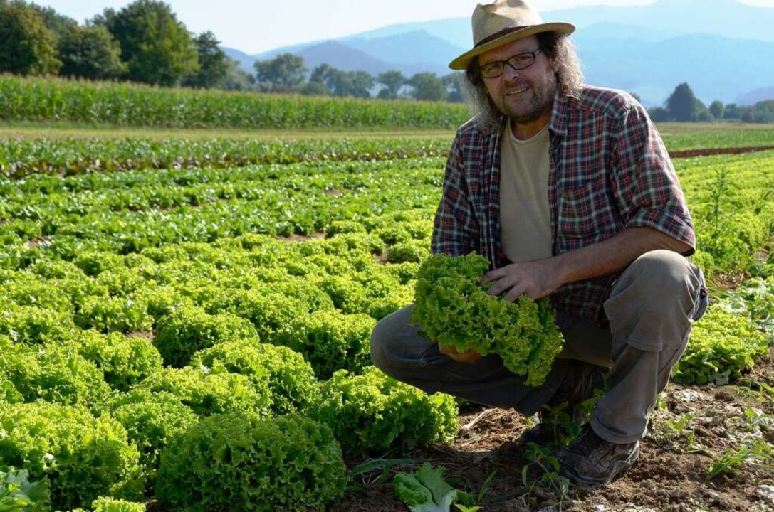 Vom Feld auf den Küchentisch: Biobauer...of baut in Gundelfingen das Gemüse an.  | Foto: Gesell Sina