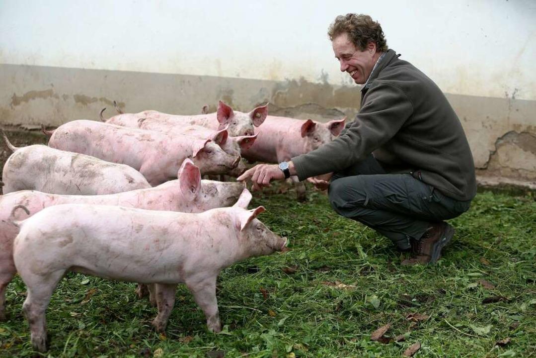 Klare Beziehung: Müllerleiles Schweine werden im Schlachthaus enden.  | Foto: Christoph Breithaupt