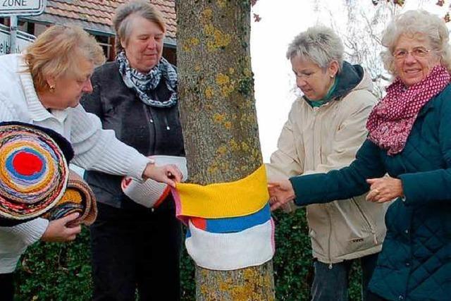 Gestricktes von Landfrauen hält Bäume warm