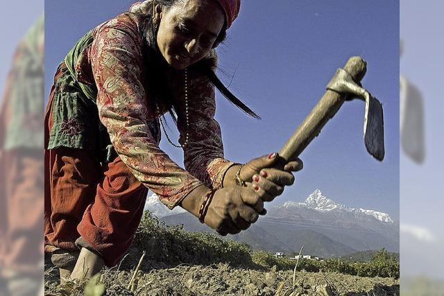 Wo der Klimawandel schon wehtut – ein Besuch in Nepal