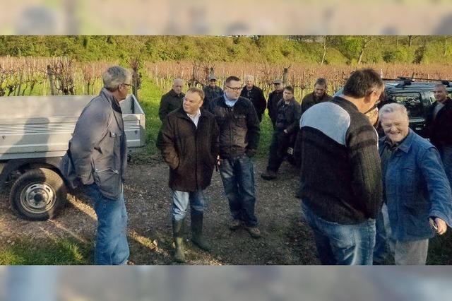 Flurbegehung in Köndringer Rebbergen zeigt Schäden durch Regenfälle