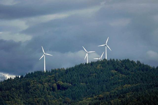 Die Freiburger lernen, mit ihren Windrädern zu leben