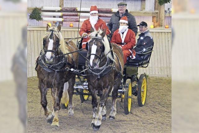 Begeisternder Pferdesport