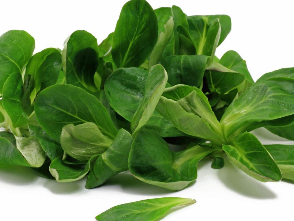 Fraglos grün: Feldsalat.    Foto: Schlierner - Fotolia