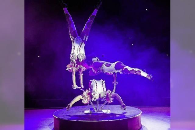 """The original Cuban Circus"": Schlangenfrauen"