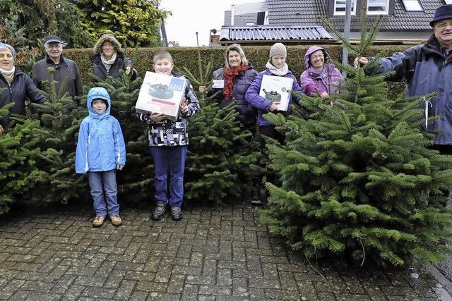 Ein Baum zur Weihnacht