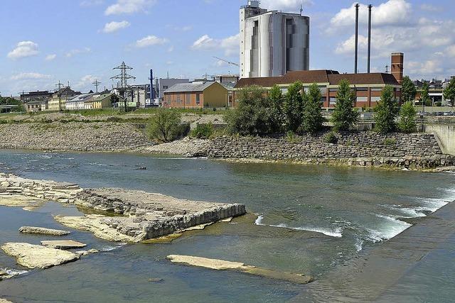 Neuer Anlauf für den Rheinsteg