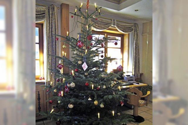 Weihnachtsbäume hängen voller Wünsche
