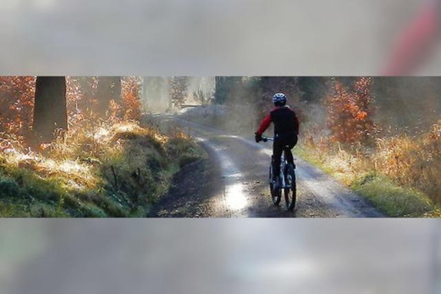 Pläne für Single Trails werden konkret