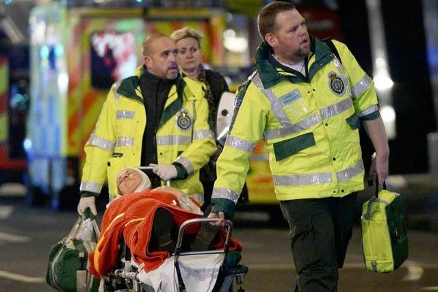 Decke stürzt ein in Londoner Theater: 80 Verletzte