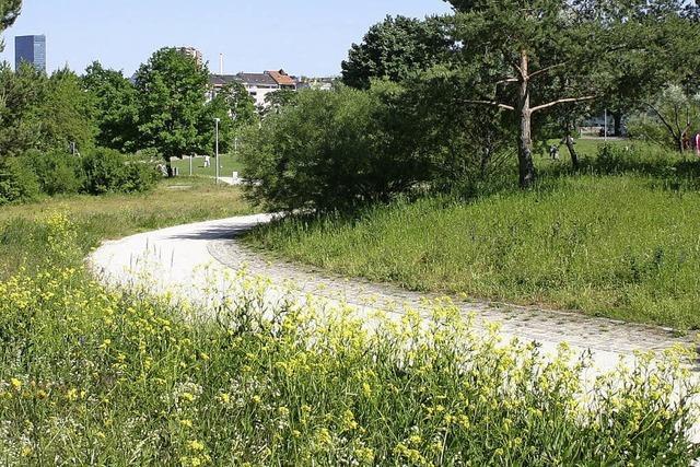 Basel will Grünflächen besser schützen