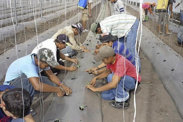 Honduras-Hilfsprojekt in Nöten