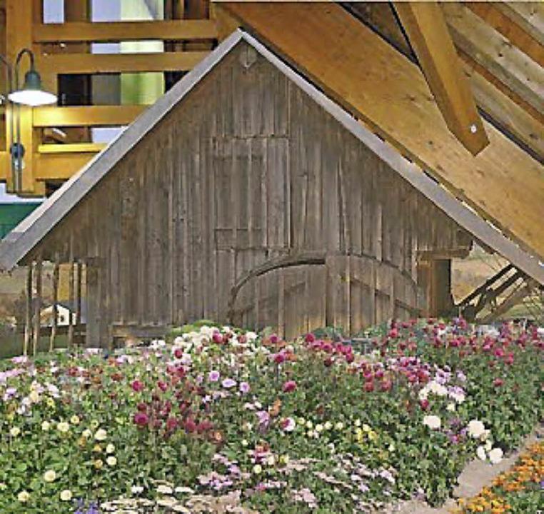 Ein riesiges Bienenhaus im Museum.  | Foto: Simon Stiegeler