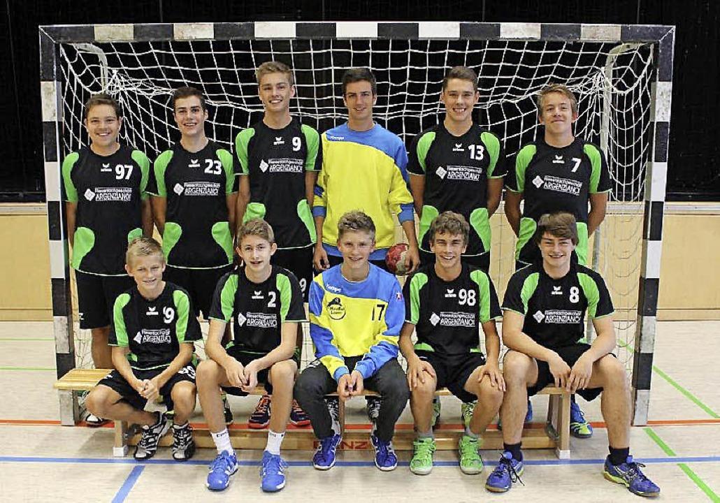 Zum Jahresende  ein überzeugender Sieg...dball Löwen B-Jugend aus Heitersheim.     Foto: Privat