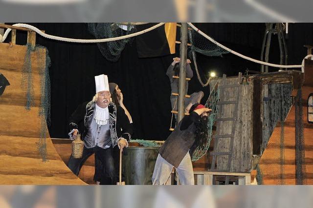 Piraten auf Schatzsuche