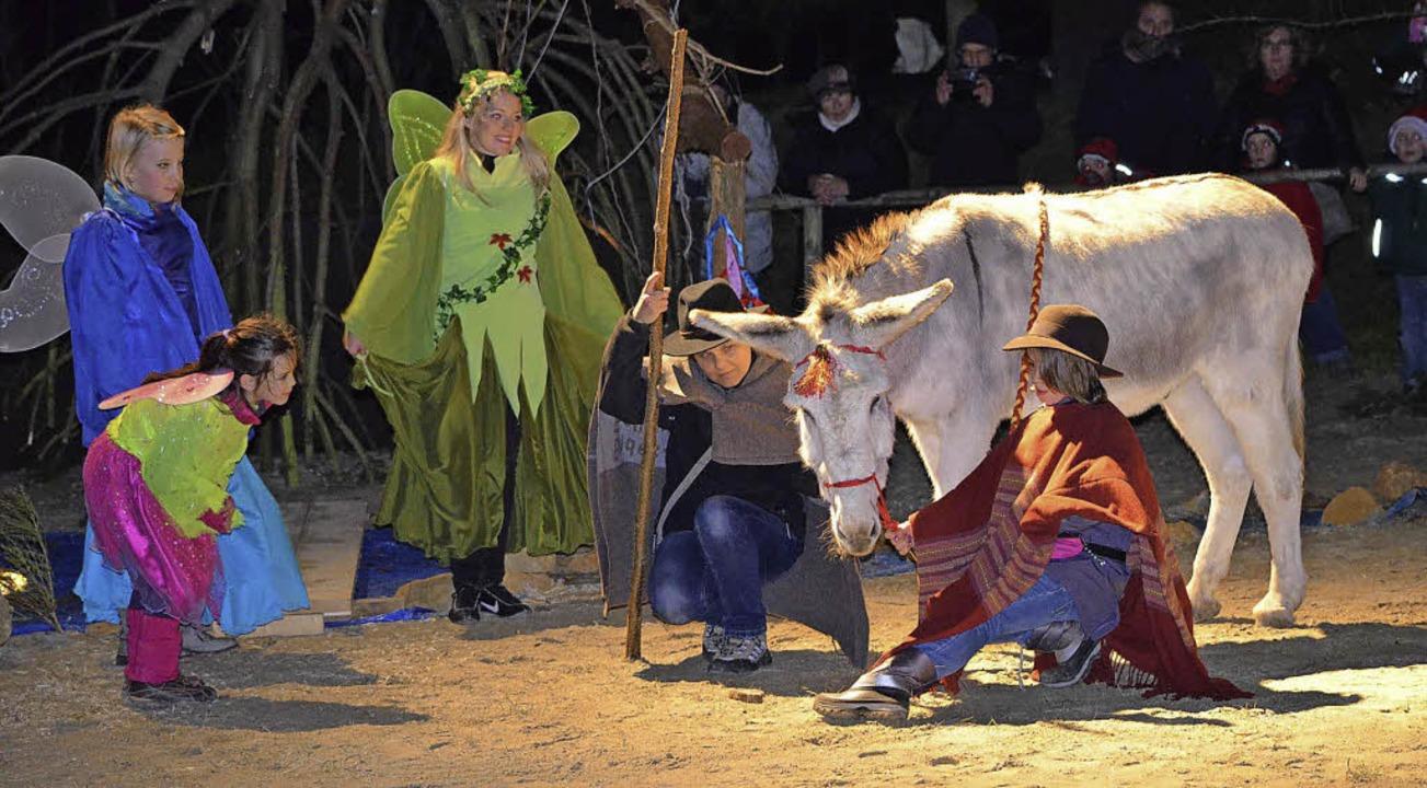 Die Weihnachtsgeschichte vom Esel Jona...iergehege  der Deponie Kahlenberg auf.  | Foto: Stefan Berndt