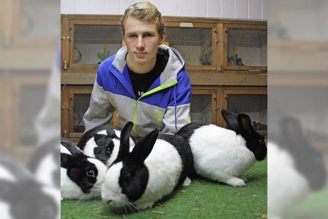 Der Mann mit dem goldenen Händchen für die Kaninchenzucht