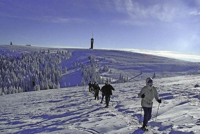 Schneeschuhtouren in Begleitung