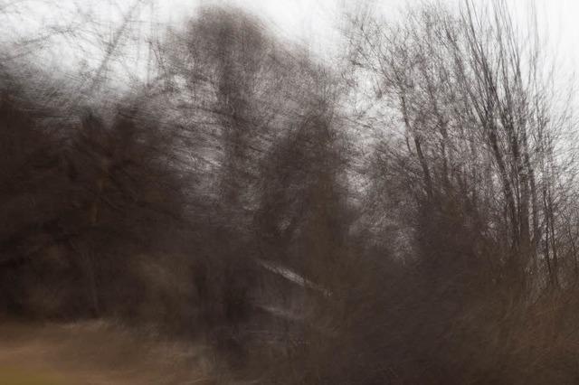 Zwischen Auftauchen und Verschwinden