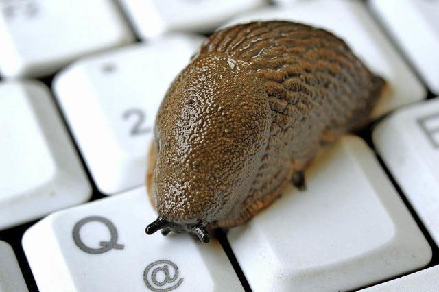 Langsames Internet sorgt für Ärger