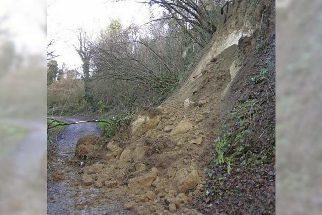 Erdrutsche im Münstertal