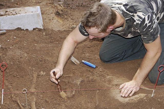 Archäologen graben weiter
