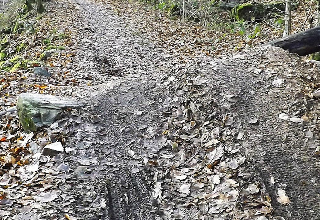 Regelrechte Schanzen haben Mountainbik... schmalen  Waldwegen entstehen lassen.    Foto: Wolfgang Adam