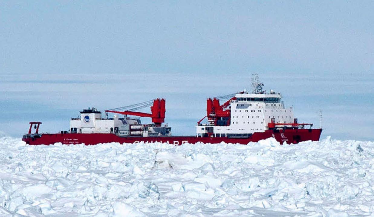 Spuckt leider kein Feuer: der chinesische Schneedrache, der im Eis festsitzt   | Foto: dpa