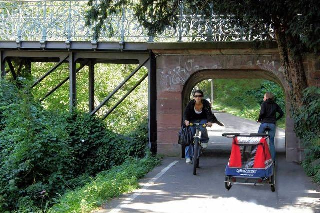 Freiburg: Dreisamuferweg wird ausgebaut