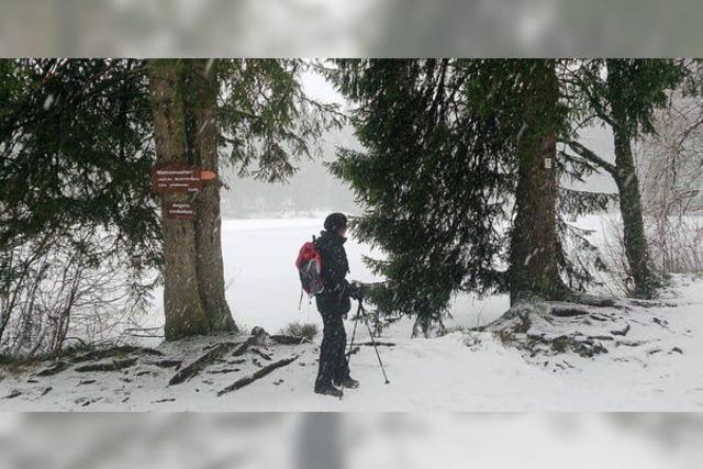 Wander-App von Schwarzwald Tourismus: Smart durch den Schnee