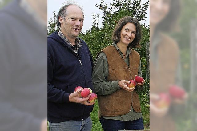 Auf dem Südhof in Denzlingen ist der Topaz der meistverkaufte Apfel