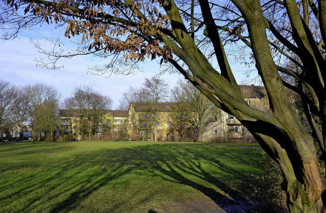 Die Grünfläche zwischen Fritz-Boehle-S... einen Baumdom der Pfadfinder werden.   | Foto: Gerhard Walser