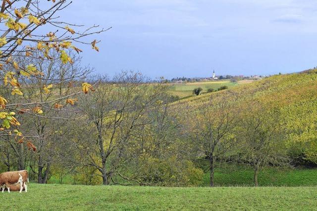 Landwirte beklagen Landverbrauch