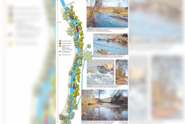 In Langenau kommt die Natur wieder in Fluss