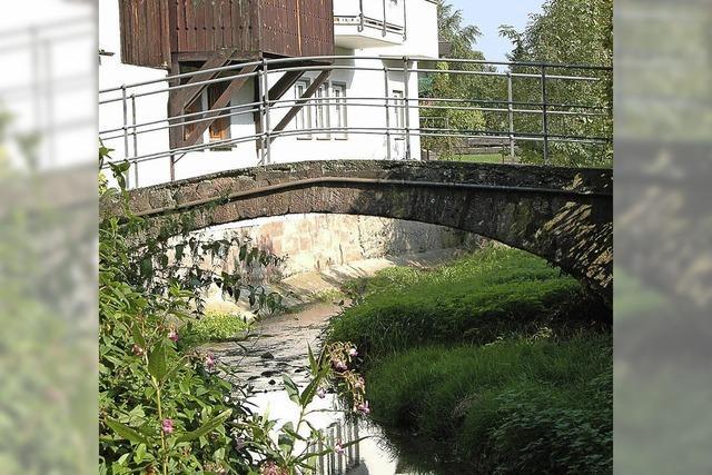 Höhn dokumentiert 25 Brücken