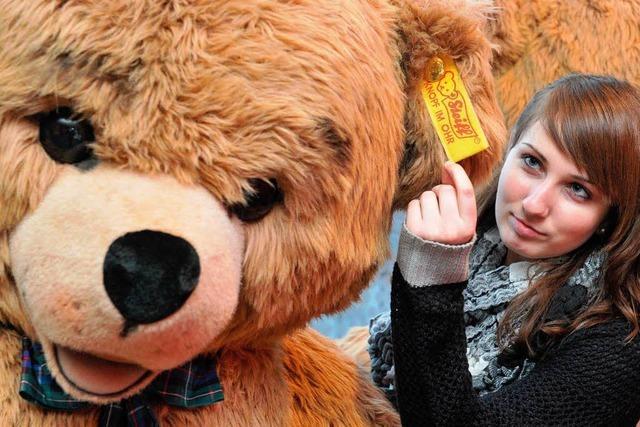 Teddys mit Knopf im Ohr: Steiff verliert vor Gericht