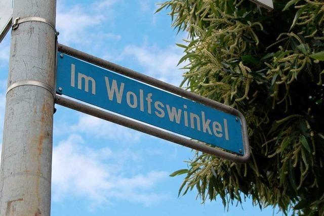Interaktive Grafik: Der mögliche Stadionstandort Wolfswinkel