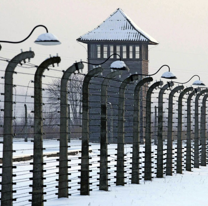Zaun und Wachturm im Konzentrationslager  Auschwitz-Birkenau   | Foto: dpa