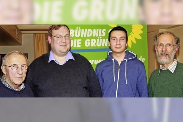 Die Grünen bündeln ihre Kräfte