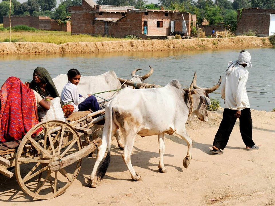 Bauernfamilie in Bundelkhand, einer besonders armen Region Nordindiens  | Foto: (FREELENS Pool) Boethling