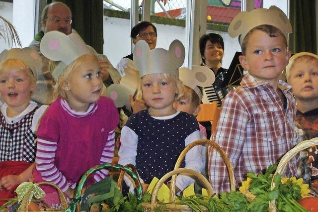 Kindergärten passen sich an