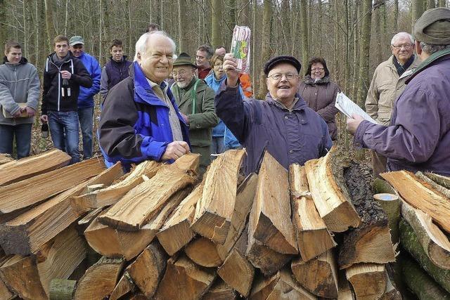 Holz ist wieder gefragt