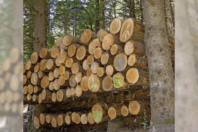 Besorgt wegen Holzvermarktung
