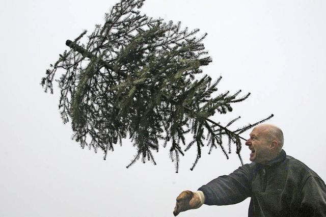 Weihnachtsbaum-Weitwurf-Gaudi in Enkenstein